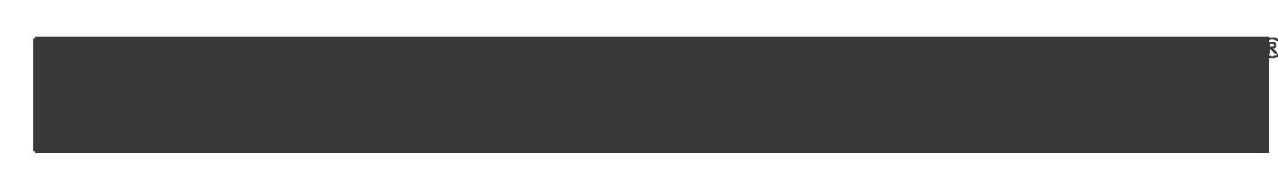 merz-logo-page